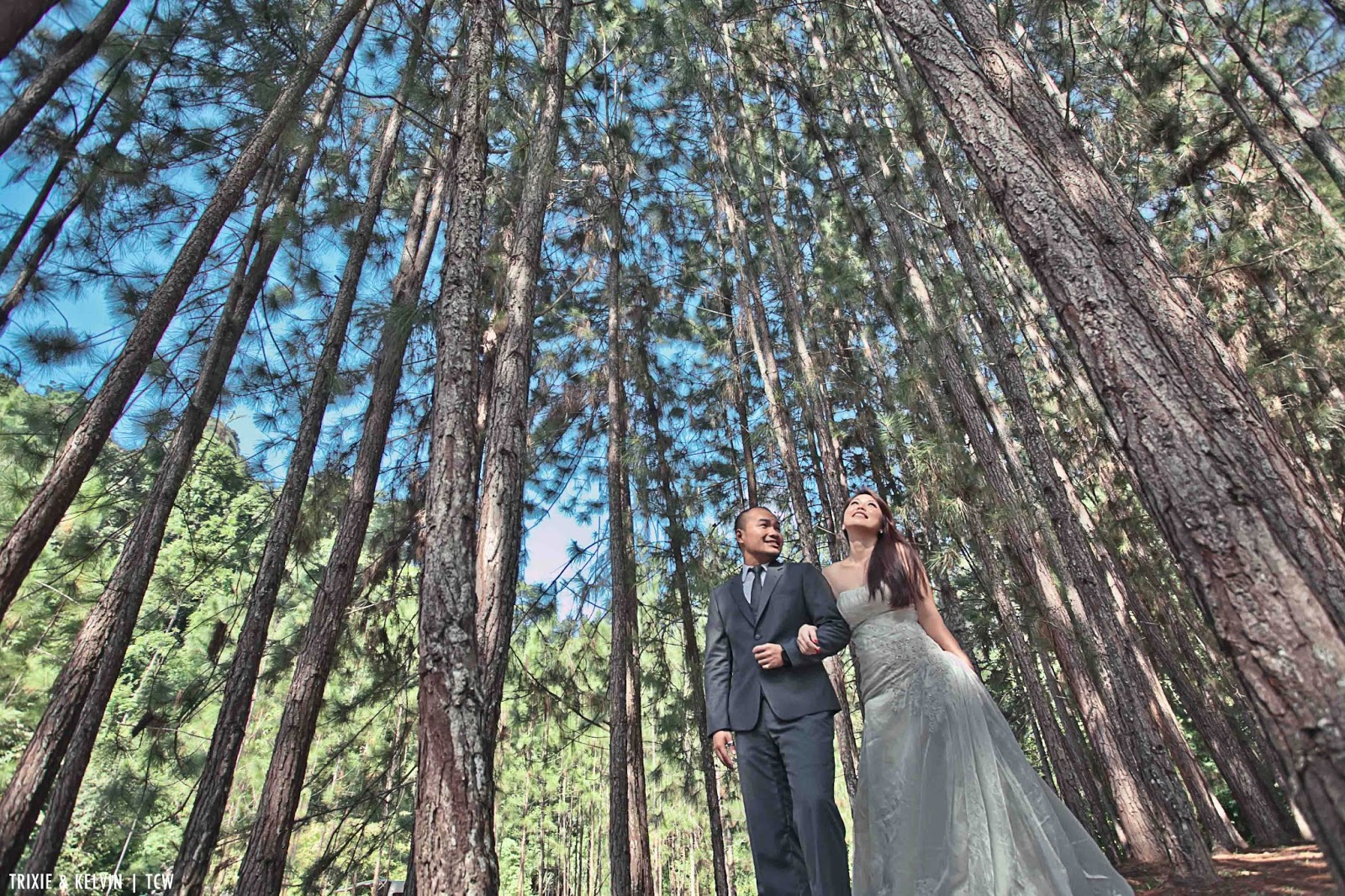 Pre-wedding photoshoot in Malaysia (FRIM, Selangor). Photo by TCW Photography
