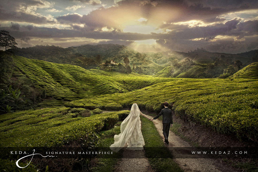 Pre-wedding photoshoot in Cameron Highlands. Photo by Keda.Z Feng