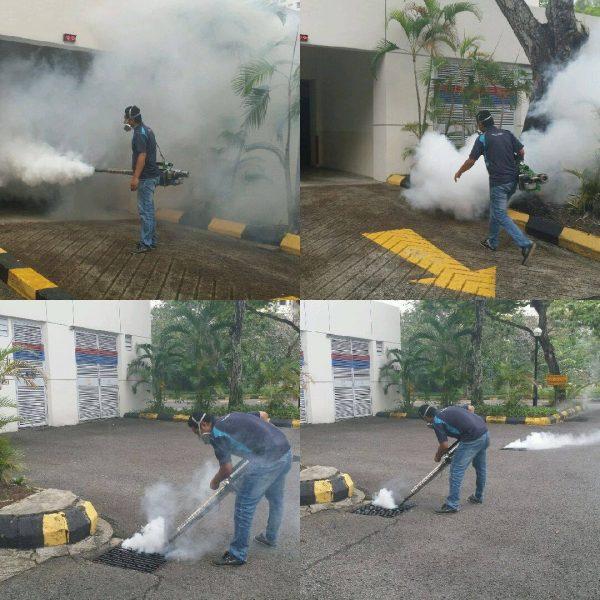 Pest Paramedics Sdn Bhd. Source.