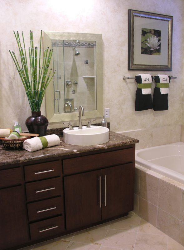 5 plants you need in your bathroom recommend living