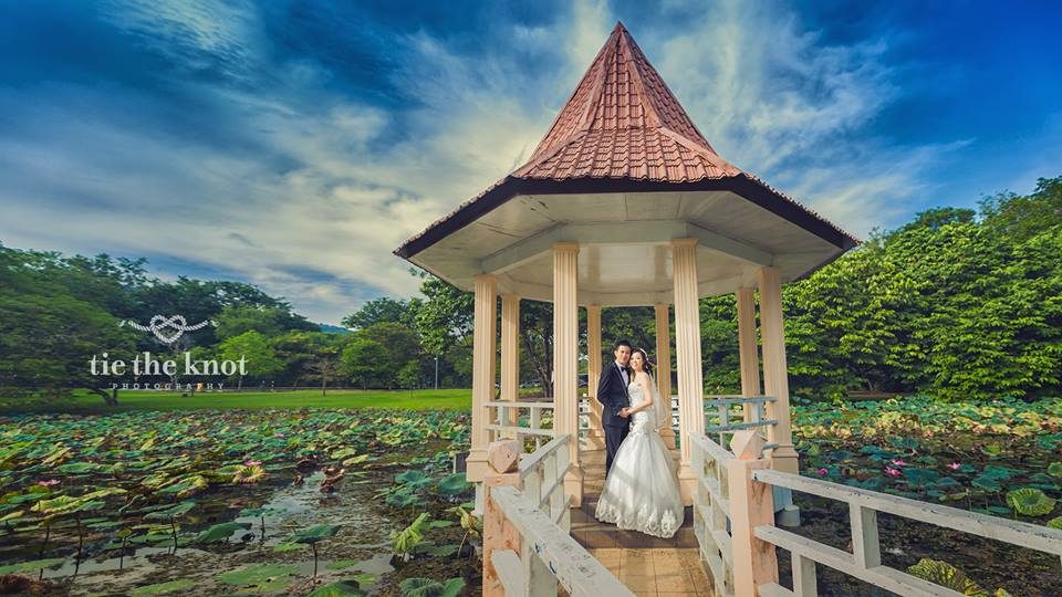 pre-wedding photos, taiping lake gardens