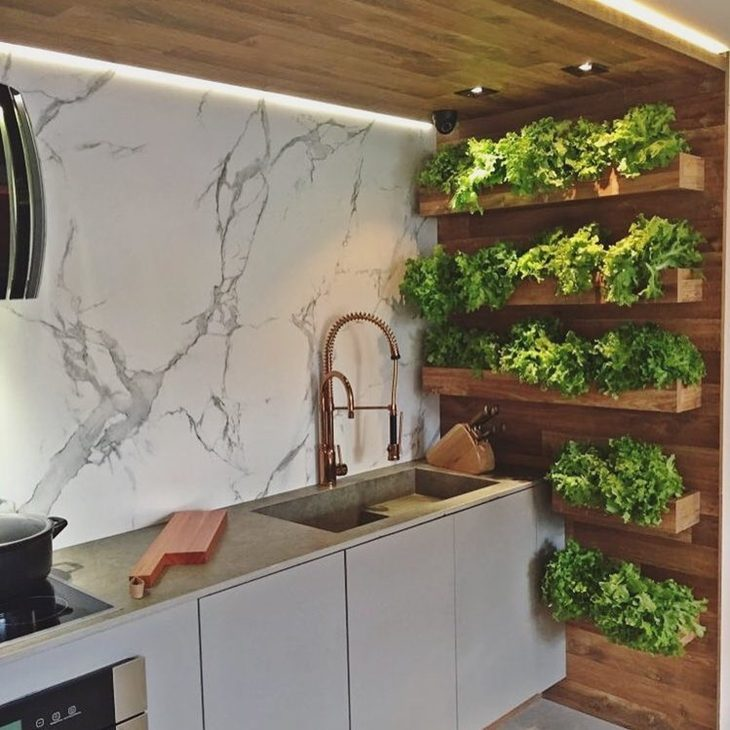 How to Grow Herbs in a Small Kitchen
