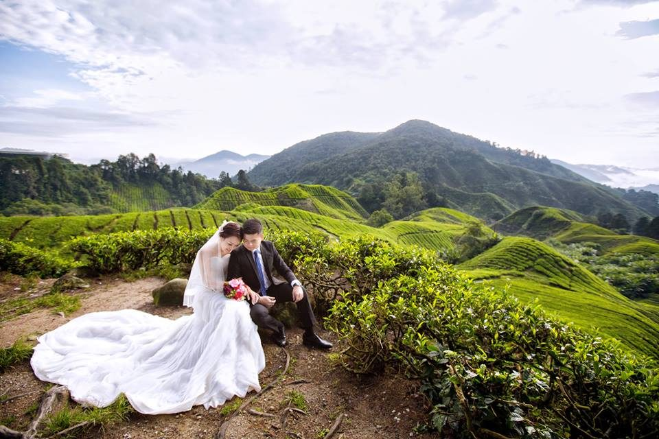 pre-wedding locations in malaysia, cameron highlands