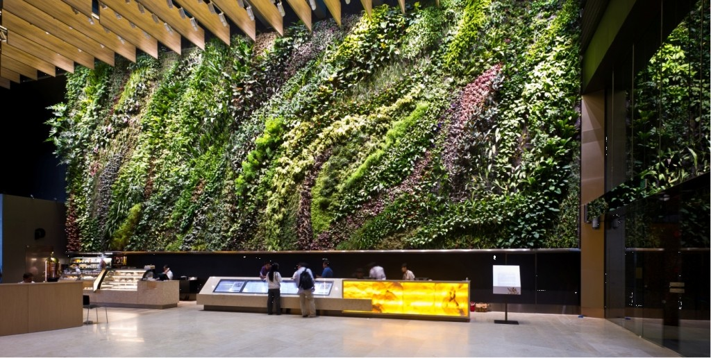 The vertical gardens at Six Battery Road in Singapore. Source