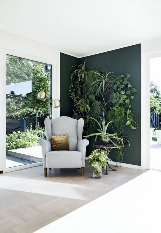 wall painting ideas for a statement corner with plants