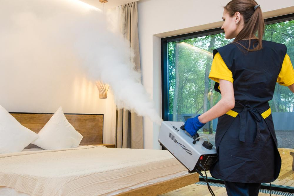 Professional disinfection using thermal fogger