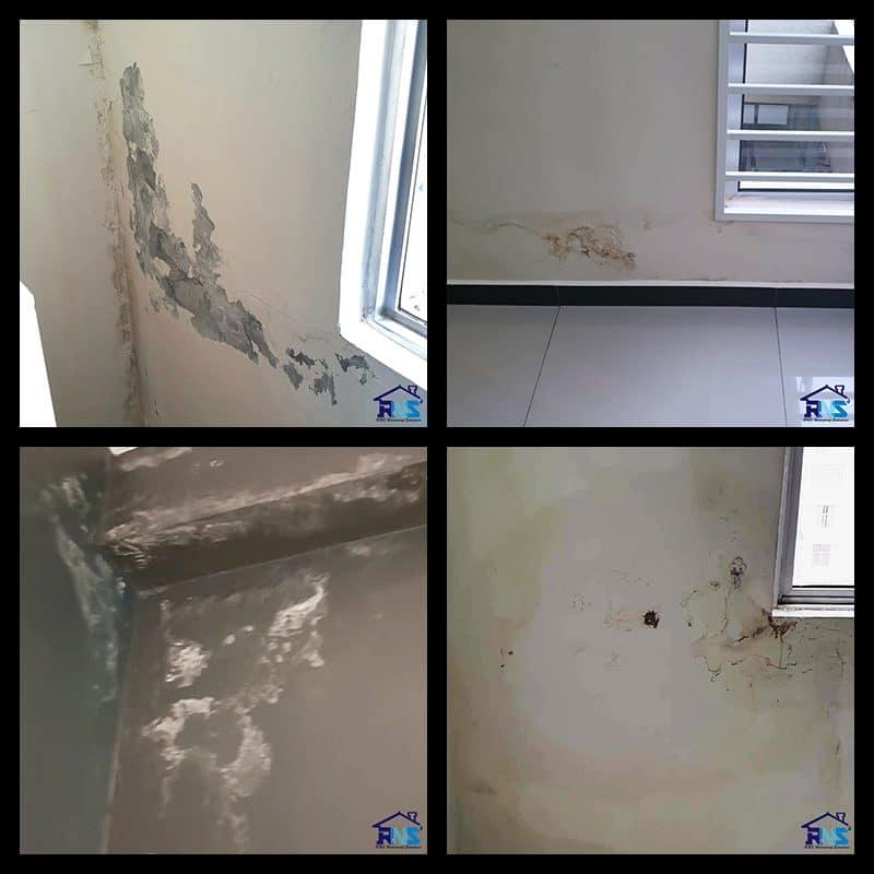 Wall Waterproofing cost