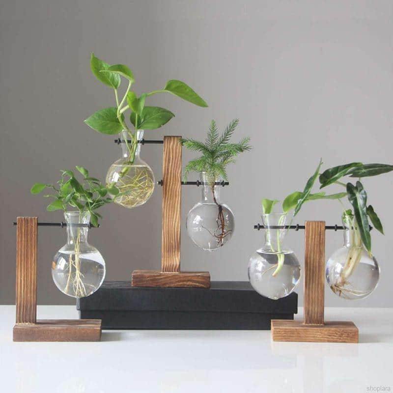 Glass Vase with Wooden Frame for Desktop