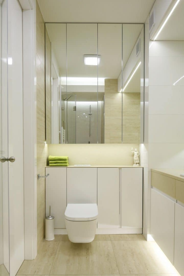 Mirrored bathroom cabinet over concealed toilet